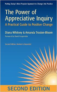 Appreciative Enquiry Book